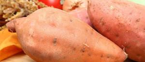 0-patatesjumeaux