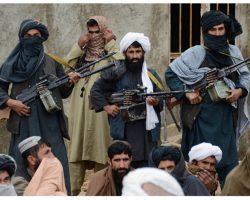 Covid-19 chez les Jihadistes : Avec 22 cas, les talibans sollicitent les agents de santé
